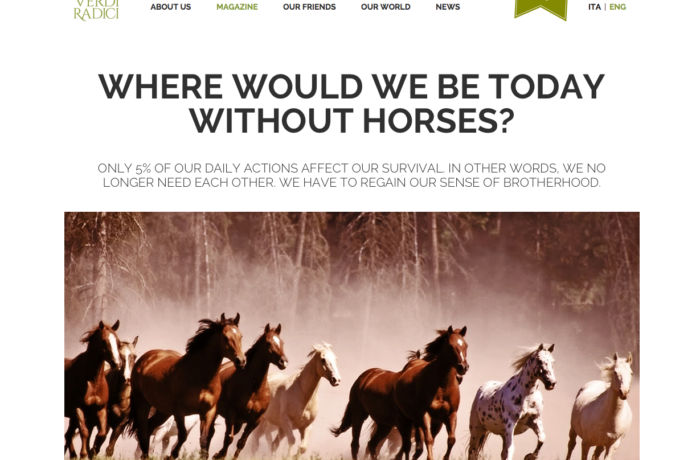 Where would we be today without horses ?